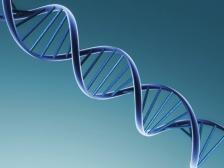 ЕС одобри първата генна терапия