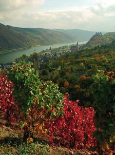Река Мозел предлага невероятни пейзажи през есента