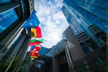 """Депутатите от """"нова"""" Европа няма да позволят радикални промени в стопанската политика"""