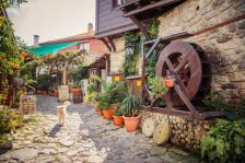 Ще има ли в България печеливши малки и семейни туристически фирми, или както досега ще доминират големите хотели и курортите?